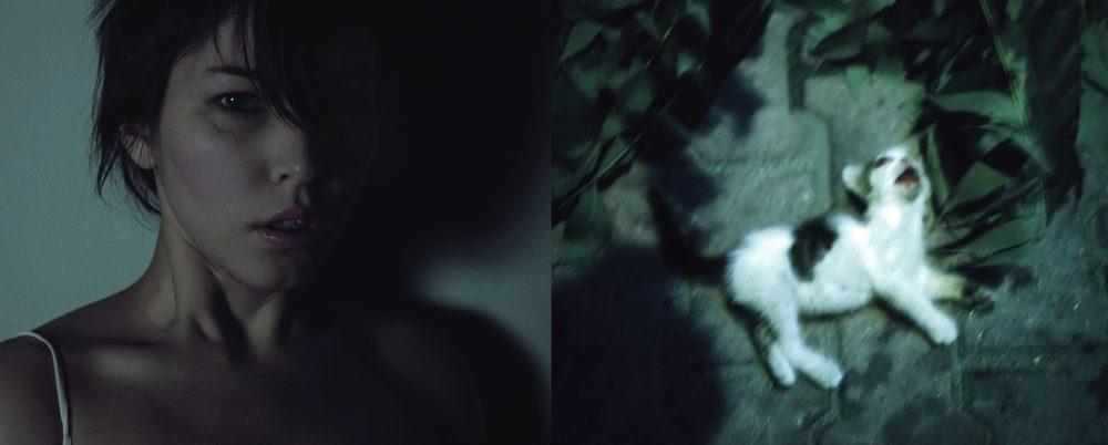 GT_Wish-Tree-01-1000x667 series   GT-20_Pudica-4_72dpi-1000x667 series   sukran-gratitude_00_web-1000x750 series   GT-42_IWLTS-self-portrait-15_h643-1000x402 series